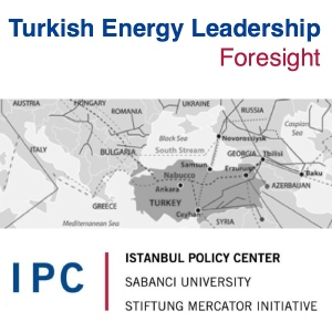 Fore more on Turkish Energy Leadership click here