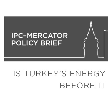 IPC Policy Brief 1